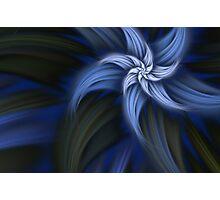 fiore blu Photographic Print