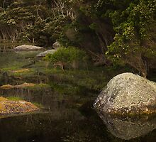 Boulders, Tidal River by daveoh