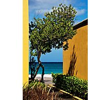 Caribbean Colour Photographic Print