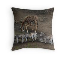 Qwa- Zulu Natal Watering Hole Throw Pillow