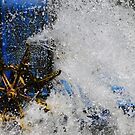 Splash by Judi Corrigan