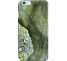 Solar Print Abstract 1- Mirrored iPhone Case/Skin