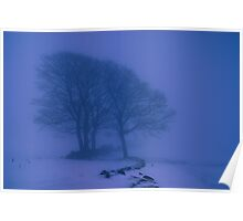 Snow Scape Poster