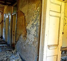 Gladesville Mental Asylum - Fallen by Bev Woodman