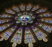 Rose Window  by Pamela Jayne Smith