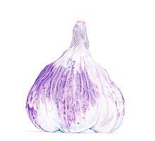 Purple garlic by Mariana Musa