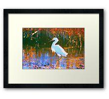 Great Snowy Egret  Framed Print