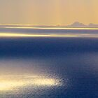 Islands in the Sun by Barbara  Brown