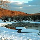 Winter Evening At Frenchcreek  by Geno Rugh