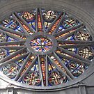 Orleans, France - Notre Dame Cathedral rose window by Denise Martin