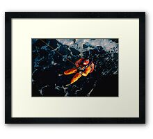 hang on in  there Framed Print
