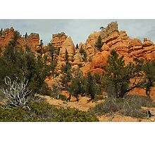 Red Canyon Morning Photographic Print