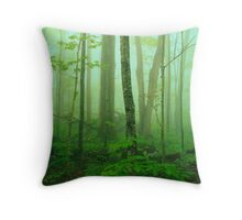 HARDWOOD FOREST,SPRING MIST Throw Pillow
