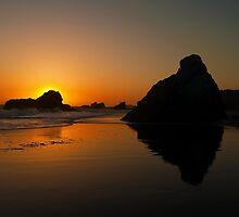 Beach Sentinels by algill