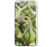 Bunch of Tomatoes iPhone Case/Skin
