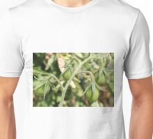 Bunch of Tomatoes Unisex T-Shirt