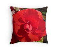 Red Begonia Throw Pillow