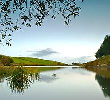 Ogden Water, Pendle by Steve  Liptrot