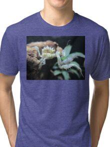 Sub Adult Spiny Flower Mantis (Pseudocreobotra wahlbergii) Tri-blend T-Shirt