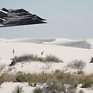 F117a Over the White Sands Mon. NM. by Michael Jeffries