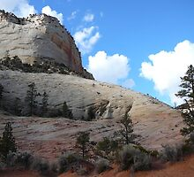 Zion National Park in winter by PigOMyHeart