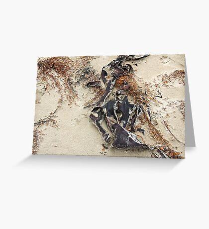 sea sculptures  Greeting Card