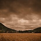 October Field by John  Goodman