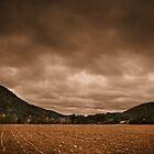 October Field by John  Goodman