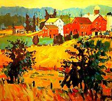 AMISH FARMS by Brian Simons