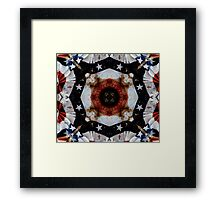 The Red White and Blue  Framed Print