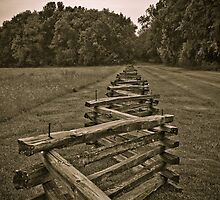 On the Fence by Charles Dobbs Photography