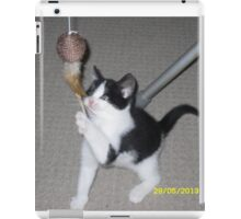 cute kitten iPad Case/Skin