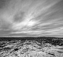 Portrait of Point Ellen in Black and White by AllshotsImaging