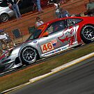 Lizard in the Esses! by JohnGo
