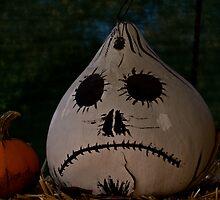 sad scary halloween gourd by petalpress