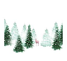 Christmas Background Photographic Print