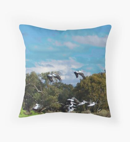 at launch Throw Pillow