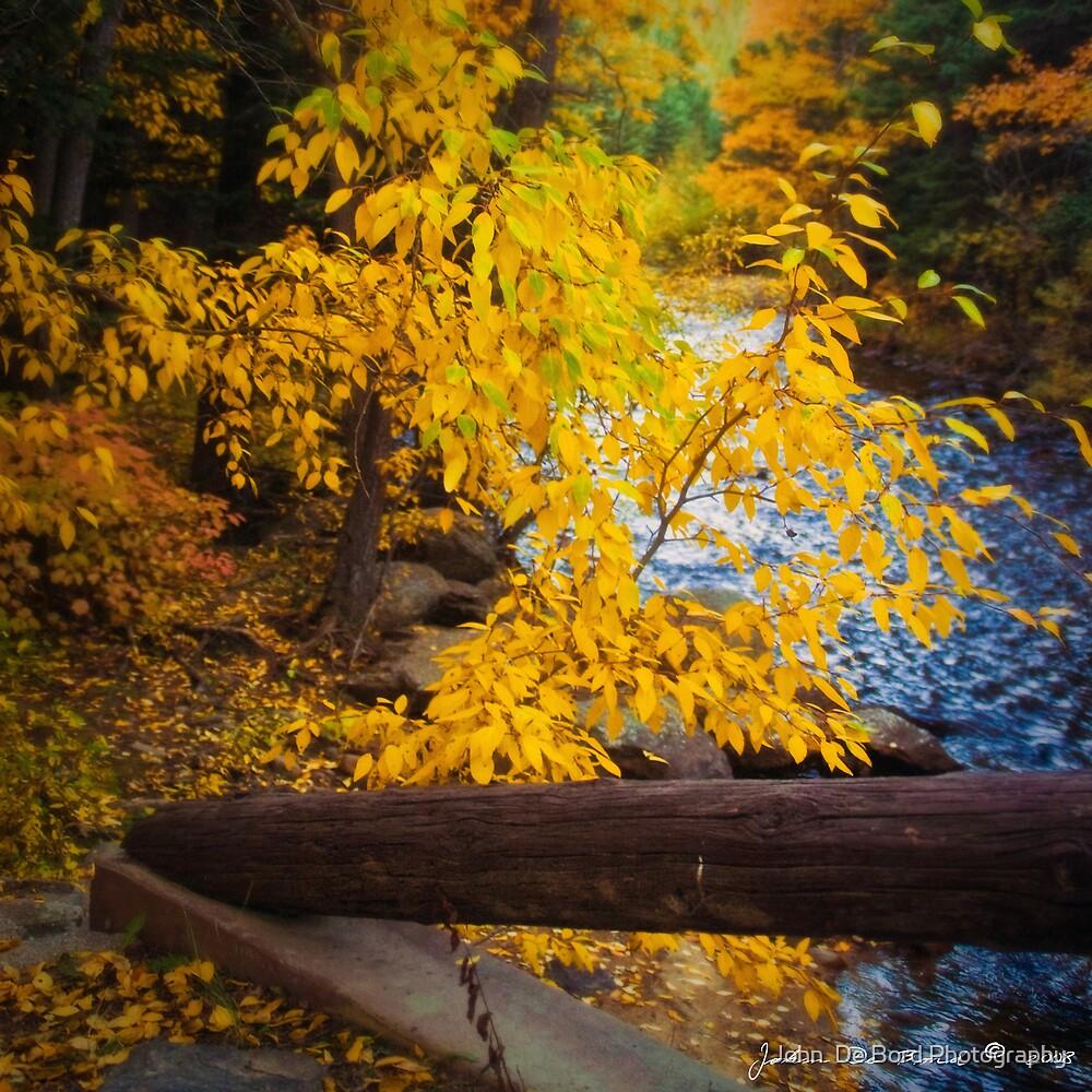 An Autumn Scenic by John  De Bord Photography