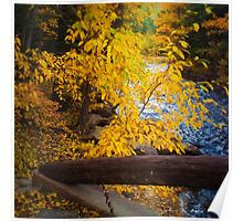 An Autumn Scenic Poster