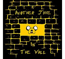 Another Jake in the wall Photographic Print