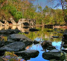 Big Rock - Beargrass Creek - Cherokee Park  by LizzieMorrison
