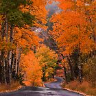 Autumn Travels by John  De Bord Photography