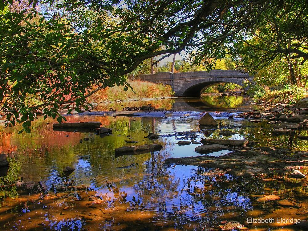 Beargrass Creek by LizzieMorrison