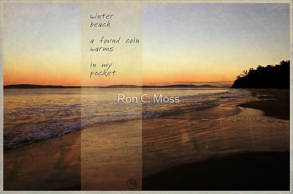 winter beach by Ron C. Moss