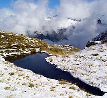 Harris Saddle, Routeburn Track, New Zealand by aerdeyn