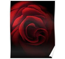 Textured Red Rose Poster