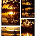 Sunset Collage by Clive