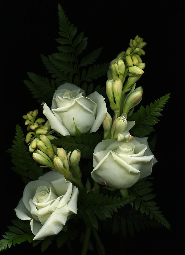 Dr Gray's Flowers by Marsha Tudor