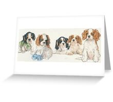 Cavalier King Charles Spaniel Puppies Greeting Card
