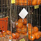 Suddenly I see Pumpkins by AndrewWakelin
